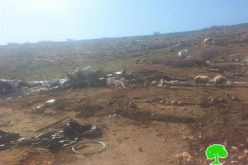 The Israeli Occupation Forces demolish structures in the Tubas area of Dhra Awwad