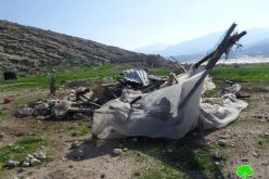 Funded by the EU: the Israeli Occupation Forces demolish structures and water network north of Jericho city