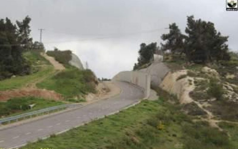 Four Palestinian families threatened of Displacement in Al Walajeh village