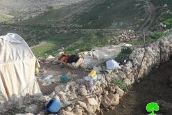 Israeli Occupation Forces demolish Khirbet Tana for the third time in row