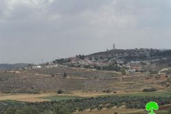 Expansion works on Shevut Rahel colony at the expense of Nablus lands