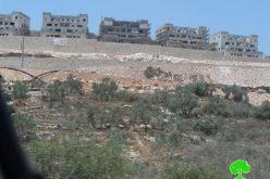 """أقيمت على أراضي خربة أثرية ..!! البؤرة الاستعمارية """"ليشم"""" أصبحت معترف بها  كمستعمرة إسرائيلية جديدة"""