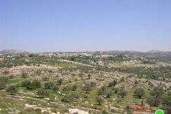 The Israeli Occupation Army torches tens of fields in Bil'in – Ramallah governorate