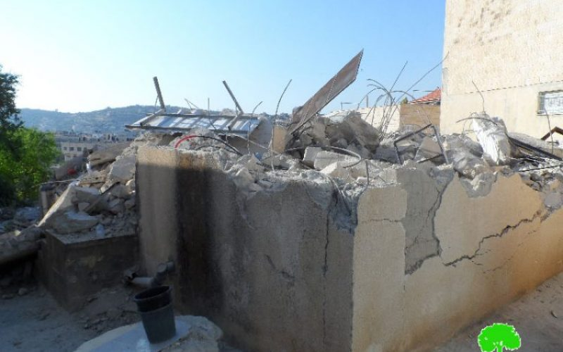 Israeli Occupation Forces demolish three residences in Jenin governorate