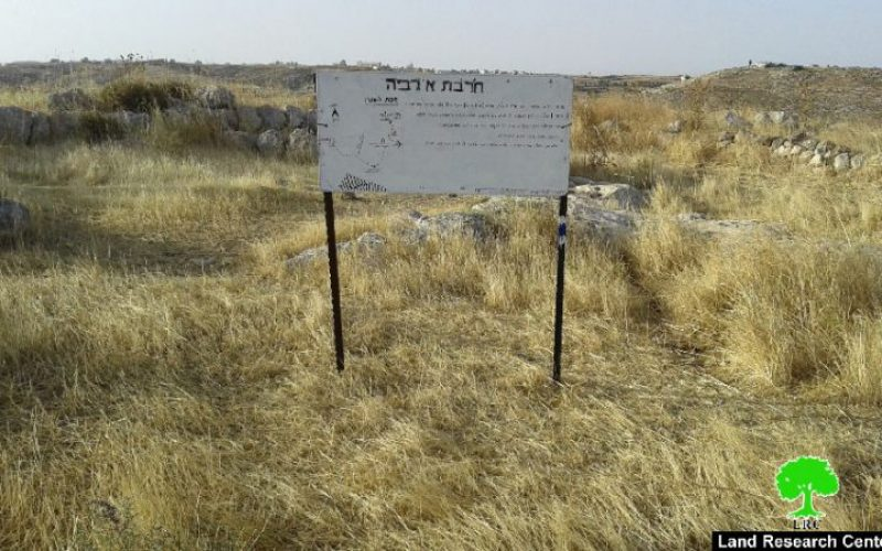 Colonists to Judaize Al-Rabyeh hamlet in Hebron village of Al-Samou'