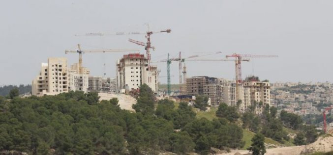 """The Israeli  Settlement Enterprise Ascends"" <br> Plans for 1,432 Housing Units approved in less than two weeks"