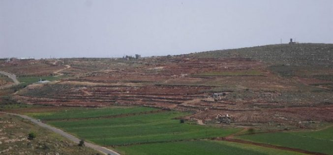 Israeli Occupation Forces demolish fences in Nablus governorate