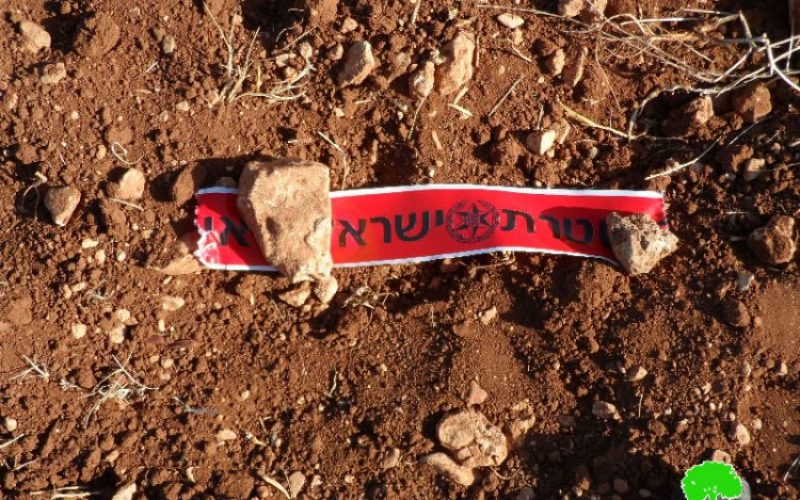 Adi Ad colonists destroy 12 olive saplings in the Ramallah village of Turmus'ayya
