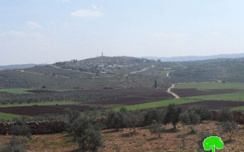 "Israel to transform 2202.7 dunums from Salfit into ""State Lands"""