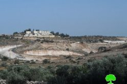 Israeli to establish a new colonial neighborhood in Elkana colony, west Salfit governorate