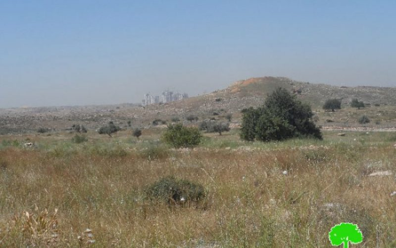 """An Israel military order to declare 1148 dunums from Salfit as """"State Property"""""""