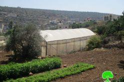 إخطارات بوقف البناء لمنشآت زراعية وصناعية في بلدة حبلة بمحافظة قلقيلية