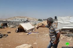 Israeli Occupation Forces demolish structures in Anata Bedouin community of Al-Azazima