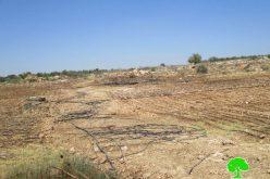 جيش الاحتلال الإسرائيلي يدمر شبكات ري لـ 23دونماً في قرية عزون عتمة بمحافظة قلقيلية