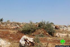 تجريف قطعة أرض واقتلاع أشجار قرب مخيم الفوار جنوب الخليل