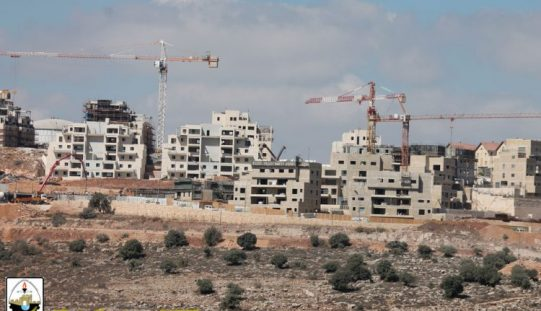 Israel's 'creeping settlement activity ranks top among the Israeli violations in the occupied Palestinian territoryin 2018
