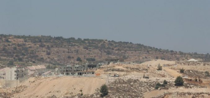 Israeli Violations in the Occupied Palestinian Territory- August 2016