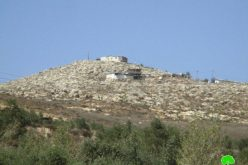 Givat Ronen colonists ravage agricultural lands in the Nablus village of Burin