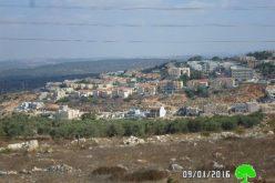 """الشروع ببناء حي استعماري جديد في مستعمرة """" رفافا"""" على أراضي بلدة دير استيا"""