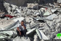 The Israeli occupation municipality demolishes a stable for horses in Jerusalem