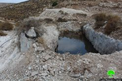Ravaging 10 dunums, uprooting trees and demolishing water pool in Hebron town of Dura