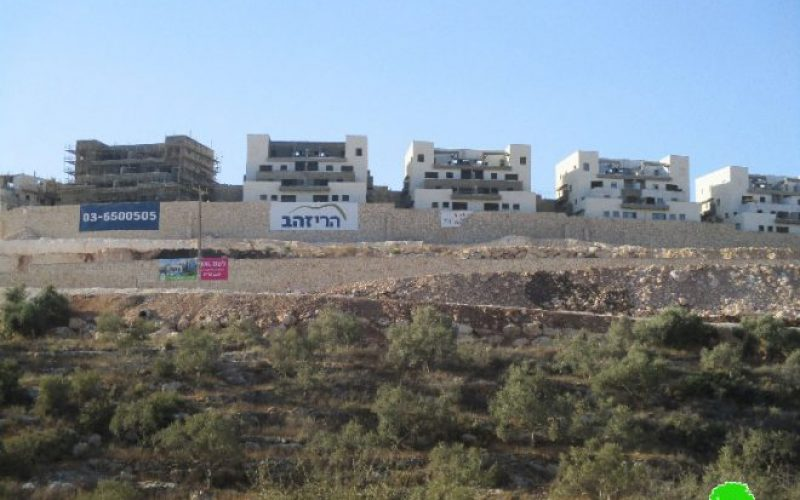 Bedoel colony continues on pumping sewage water into the Lands of Kfar Ad-Dik