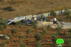 جيش الاحتلال الإسرائيلي يهدم بركساً وغرفة زراعية في قرية جيوس