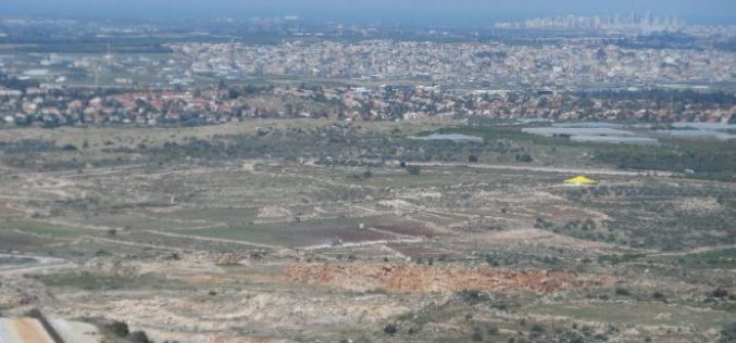 Israeli military order to seize four dunums from the Qalqiliya village of Jayyous
