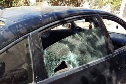 During olive harvesting season: Israeli attacks on Palestinian families rapidly increase in Qaryut village