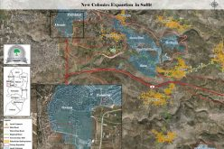 New master plan for Oranit colony