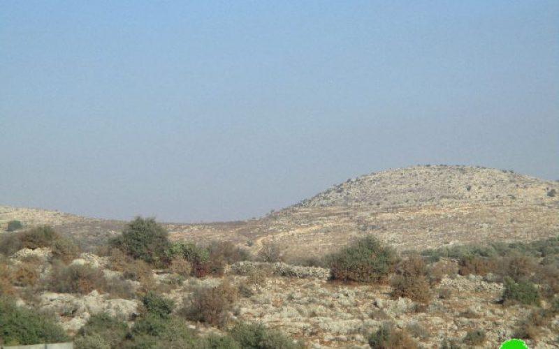جيش الاحتلال يتسبب في إحراق 17 شجرة زيتون مثمرة في قرية سلواد