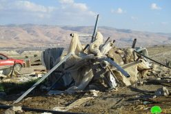 Israeli Occupation Forces demolish AL-Deir Bedouin community in Ein Al-Beida village