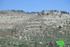 إحراق أراضي زراعية في بلدة برقة بمحافظة نابلس