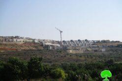 """مخطط هيكلي جديد لمستعمرة """" اورنيت"""" على أراضي قرية عزون عتمة"""