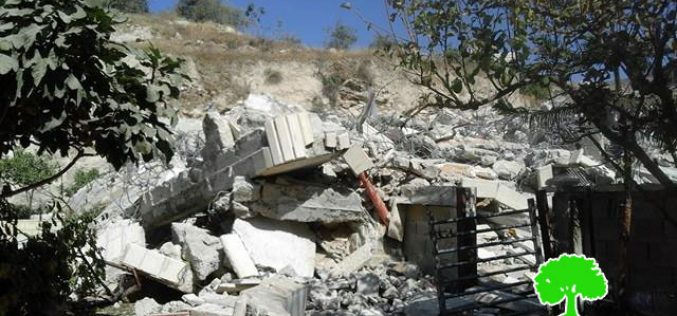 Dozers of Israel Municipality demolish a building in the Jerusalem town of Silwan