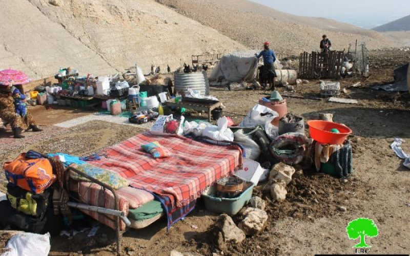 Israeli Occupation Forces demolish agricultural and residential structures in Palestinian Jordan Valley