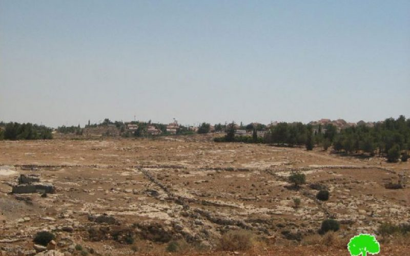 A new master plan for Ma'on colony at the expense of Palestinian lands