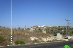Gilad Zohar colonists ban Palestinian farmers from harvesting olives in Qalqiliya governorate
