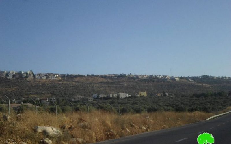 Israeli occupation authorities to establish a cemetery on confiscated lands from Salfit governorate
