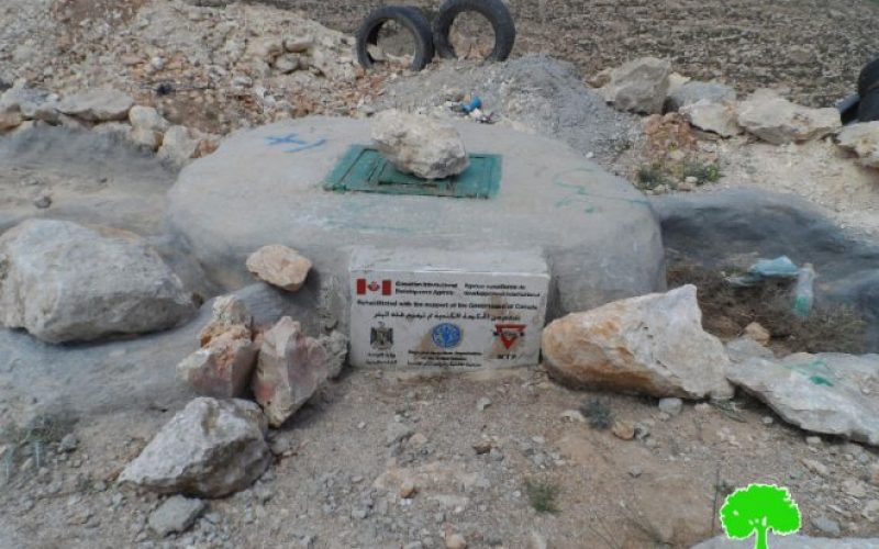 Israeli Occupation Forces destroy 870 olive trees and water well in Yatta town