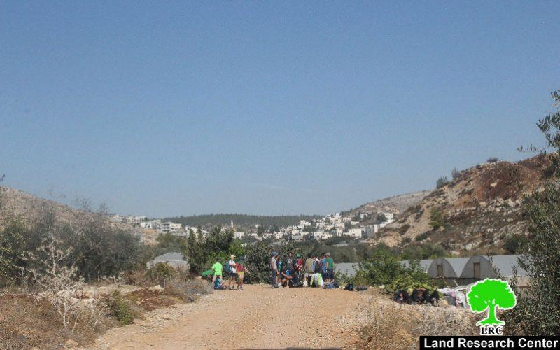 """مستعمرو """"بيتار عيليت"""" يقتحمون البرك الزراعية لقرية واد فوكين  بمحافظة بيت لحم"""