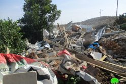 Israeli Occupation Forces demolish nine agricultural structures in Qalqiliya