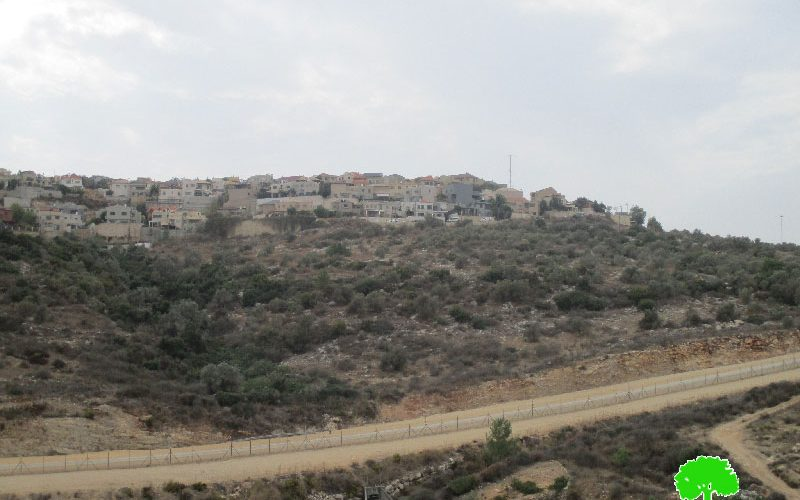 New master plan for Alfei Menashe colony at the expense of Azzun town