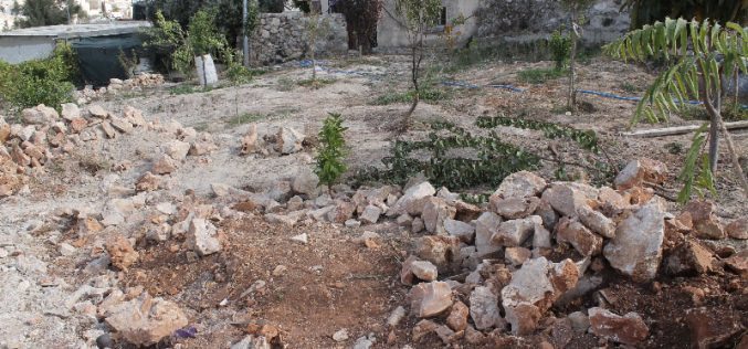 جرافات الاحتلال تهدم مسكناً وإسطبل لتربية الخيل في حي الثوري بالقدس المحتلة