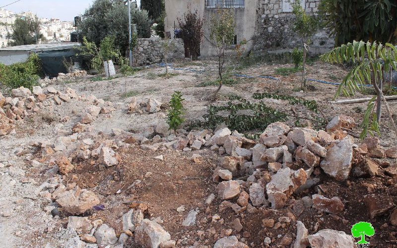 Dozers of Israel Municipality in Jerusalem demolish a residence and a stable in Al-Thori neighborhood