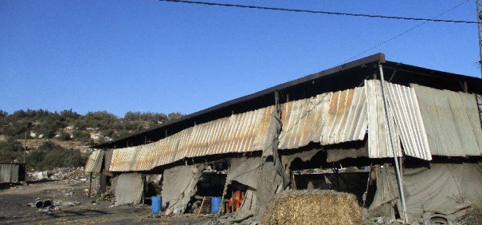 الاحتلال الاسرائيلي يصادر أطنان من الفحم ومعدات زراعية في بلدة  يعبد