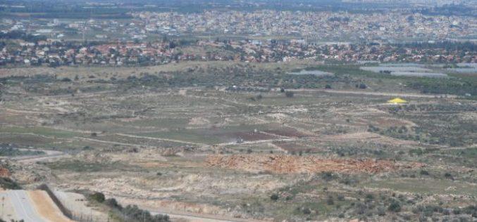 Stop-work order on land rehabilitation works in Qalqiliya governorate