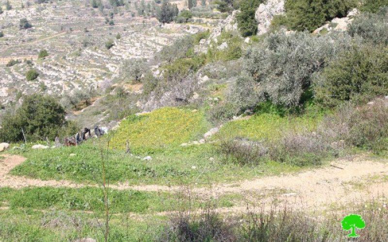 الاحتلال يعلن النية بشراء الحقوق في الأرض وشراء الملكية بمساحة 5 دونم من أراضي قرية الولجة