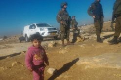 Israeli Occupation Forces confiscate solar panels from the Hebron village of Susiya