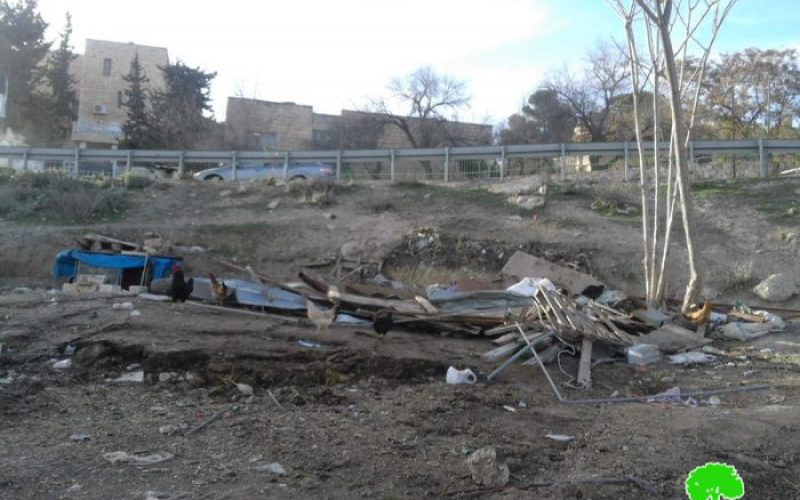 Israel Municipality demolishes a barn in Jabal Al-Mukabbir area